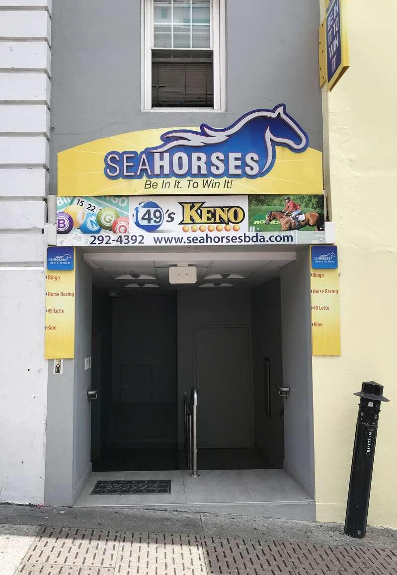 Seahorses betting bermuda infobetting fourm
